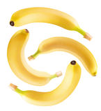 Set of bananas isolated on the white background Royalty Free Stock Images
