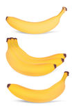 Set of bananas. Royalty Free Stock Photo