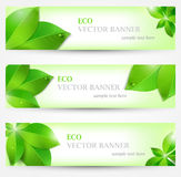 Set banner ecology illustration, colorful Stock Image