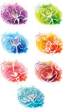 Set of banner with flower heads Royalty Free Stock Images