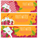 Set of banners with bright fruit water in mason jar Stock Image