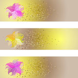 Set of banners with colorful leaves veiled. Tickets nuanced, romantic for events, parties, celebrations Royalty Free Stock Image