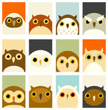 Set of banners with cute owls Royalty Free Stock Image