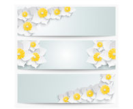 A set of banners with 3d white daffodils. Spring floral paper  labels. Stock Images