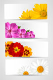 Set of banners with different colorful flowers Royalty Free Stock Images