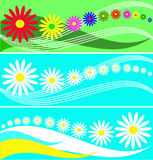 Set of banners from flowers Royalty Free Stock Photo