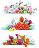Set banners with flowers Stock Photo