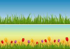 Set of Banners: Grass Vector. Banners of grass and flowers during different parts of the day Stock Image