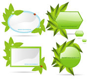 Set banners with leaf. Stock Photo
