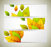 Set of banners with leaves Stock Images