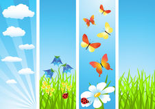 Set banners. Meadow. Royalty Free Stock Photos