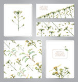 Set of banners, pattern, blank, and illustrations with flowers Royalty Free Stock Image