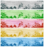 Set of Banners with Plants and Grasses Royalty Free Stock Photography