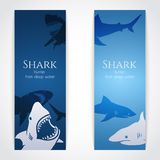 Set of banners with sharks Stock Photography