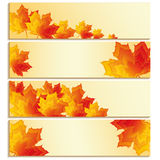 Set of banners with yellow, orange, red maple leaves Royalty Free Stock Image