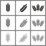 Set of Barley Icons. Set of black truck icons on white background for graphic design and Internet sites. Vector illustration Vector Illustration