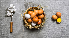 Set a basket of eggs, whisk with beaten egg . Stock Image