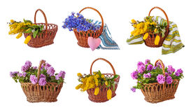 Set a basket of flowers Stock Photography