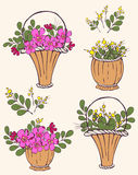 Set of baskets of flowers  Royalty Free Stock Image