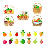 Set of baskets with fruits. Stock Image