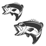 Set of bass fish icons isolated on white background. Stock Photos