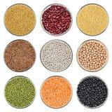 Set of beans isolated on white background Royalty Free Stock Photo