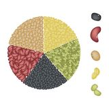 Set of Beans in Pie Chart Concept Stock Photography