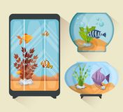 Set beautiful aquariums icons. Vector illustration design Stock Images