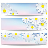 Set of beautiful banners with white flower chamomile. Set of beautiful trendy banner blue-pink with 3d flower chamomile on white background. Creative stylish vector illustration