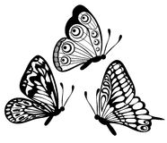 Set of black and white butterfly vector illustration