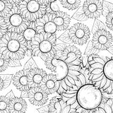 Set of beautiful black and white seamless background with sunflowers. Royalty Free Stock Photography