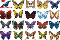 A set of beautiful butterflies. Vector illustration Royalty Free Stock Photography