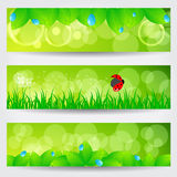 Set of beautiful green spring banners Stock Images