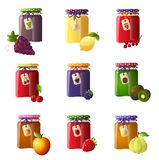 Set of beautiful jars with a different type of jam. Strawberry jam, kiwi, orange, raspberry and others royalty free illustration