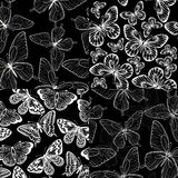 Set of beautiful monochrome black and white seamless background with butterflies. Stock Images
