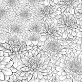 Set of beautiful monochrome black and white seamless pattern with flowers. Stock Image