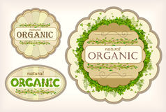 Set beautiful organic label Royalty Free Stock Images