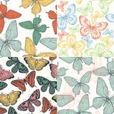 Set of Beautiful seamless background with butterflies vintage color. Stock Photography