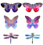Set with beautiful watercolor butterflies and dragonflies isolated on white background. Colors of space, starry sky.  stock illustration