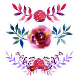 Set of beautiful watercolor flowers Royalty Free Stock Images