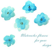 Set of beautiful watercolor flowers on white background. Set of beautiful watercolor flowers on white Royalty Free Stock Photography