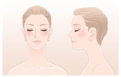Set of Beautiful woman portrait with eyes closed. Set of of Beautiful woman portrait with eyes closed, front and side view. Isolated.Blend tool is used in this Royalty Free Stock Image