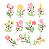 Set of beauty floral bouquets Stock Images