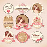 Set of beauty labels. Set of natural beauty labels with roses Stock Images