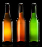 Set of beer bottles isolated Stock Image