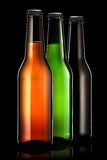 Set of beer bottles isolated on black background Royalty Free Stock Photos