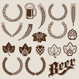 Beer Ingredients Ornamental Designs Stock Image