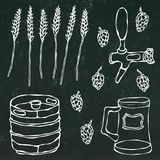 Set of Beer Objects: Hop, Malt, Mug, Tap, Keg.  on a Black Chalkboard Background. Realistic Doodle Cartoon Style Royalty Free Stock Image