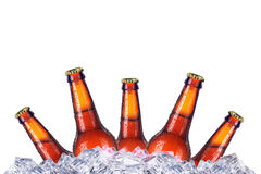 Set of beer's bottles with frosty drops in ice Stock Photography