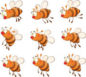 Set of bees cartoon. Set of nice striped little bees Royalty Free Stock Photography